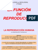 reproduccion humana.pdf