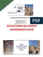 Marcello Napoli Malfunzionamento della FAV 080515.pdf