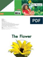30 the Flower
