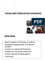 3.Cultural Issues