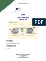 Guia de Observacion Celular