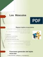 MUSCULOS (1)