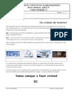 Protocolo 7 3ºano 16-17 - Joana Carvalho