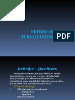 Curs_4-_Nefropatiile_Tubulo-_Interstitiale_2