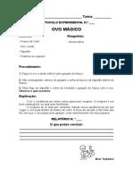 Protocolo Experimental  - Ovo M+ígico (2)