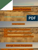 the savannah ecosystem  1