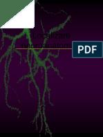 Localizare neuroanatomica