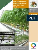 jitomate en invernadero.pdf