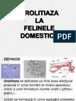 Urolitiaza