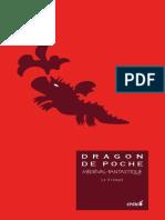 Dragon de Poche 2