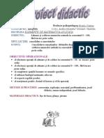 Proiect Matematica. Bratila Cristina
