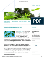 Biocombustibles de Microalgas (II)