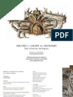 Curiosidades.pdf