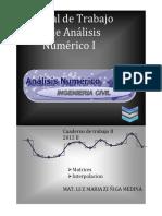 310847811-Manual-de-Interpolacion-2015.pdf