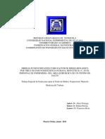 TGERN67A552011AlirioNoriega.pdf