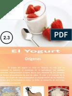 Bebida Fermentada - Yogurt