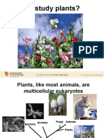 why study plants part 1