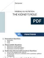 1.The Kidney's Role