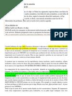 PREDICA 2.docx