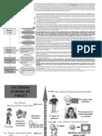 Etapas de Pieget Desarrollo Intelectual Para Magisterio Quinto