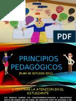 Presentacion de Los Principios Pedagogicos