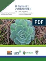 Echeveria; Manual Del Perfil Diagnostico Del Genero Echeveria en Mexico
