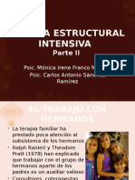 Terapia Estructural Intensiva Parte II
