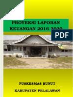 Proyeksi Laporan Keuangan Bunut