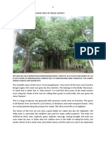Heritage Trees of Tiruchi District