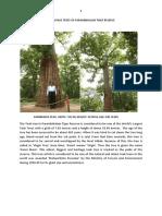 Heritage Trees of Parambikulam Tiger Reserve (PTR)