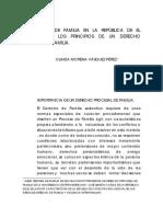 El Proceso de Familia en La Republica de El Salvador0