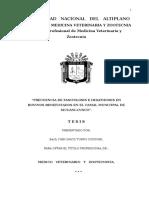 TESIS IVAN DAVID TURPO CONDORI.doc