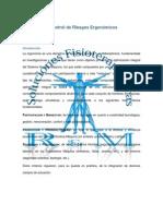 Evaluación y Control de Riesgos Ergonómicos by Soluciones Fisioterapéuticas R&M