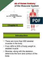 Essentials of Human Anatomy 8