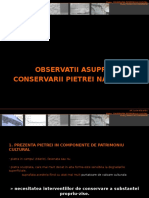 Observatii Asupra Conservarii Pietrei Naturale-Alex Gavozdea