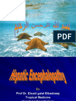 hepatic encephalopathy pptهام جداااا