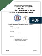 Clase 2. Anatomía Del Esófago Estómago y Peritoneo