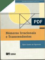 Numeros Irracionais e Transcedentes - Djairo