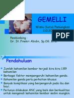 133659902-gemelli-ppt