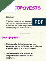2. Leucopoyesis