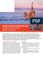 Wildlife and Offshore Drilling Arctic