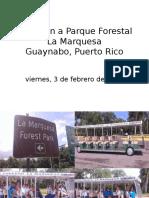 Excursion Parque Forestal