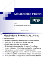 Metab Protein.ppt