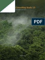 Consulting Report 12_The Felda Case Study