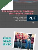 Enamoramiento, Noviazgo, Matrimonio, Familia