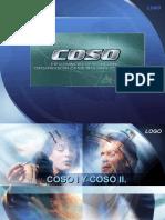 COSO 1 Y 2