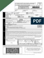 modelo790 AUXILIAR.pdf