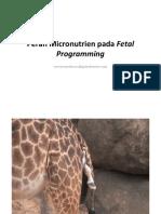 Materi 1 Peran Micronutrien Pada Fetal Programming Dr. NoroyonoSpOG K