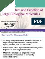 05 Macromolecules