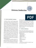 Anatomia humana - sistêmica e segmentar - 3. ed - Dangelo & Fattini - Terceira Parte..pdf